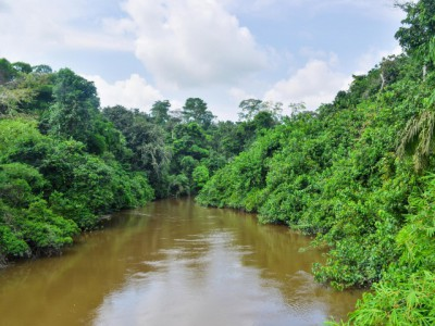 Upoznajte moćni i neistraženi Kongo
