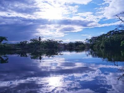 Znate li koliko mostova postoji na reci Amazon?