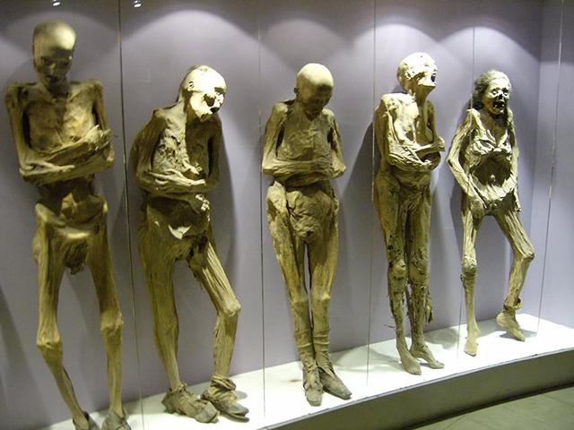Najluđi muzeji na svetu