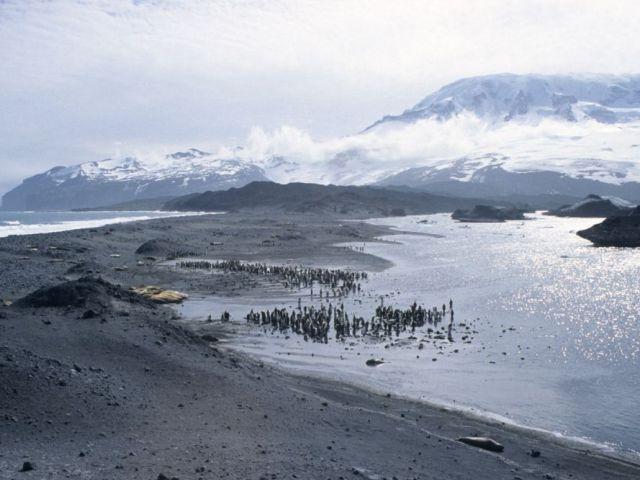 Ostrvo Herd i Mekdonaldova ostrva