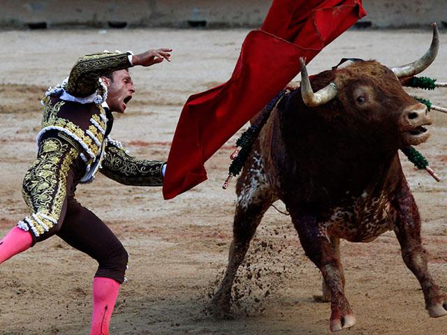 Pamplona i fijesta