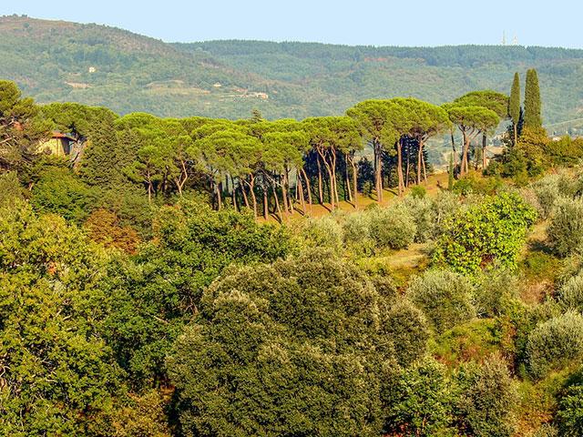 Toskana, parče italijanskog raja