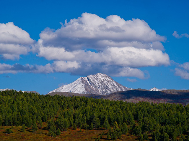 Tundre, Sibir u pravom smislu
