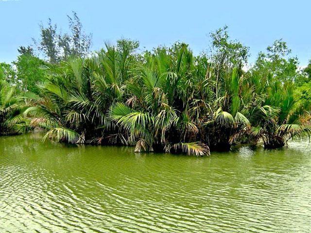 Upoznajte najveću deltu sveta, kraljevstvo bengalskog tigra