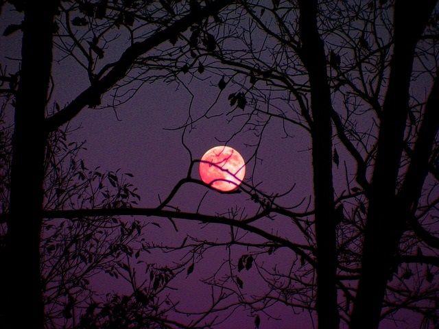 Da li znate kako fenomen punog meseca utiče na ljudski san?