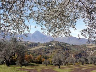 Abruco, prelep Nacionalni Park na jugu Italije kojim gospodare vukovi i medvedi