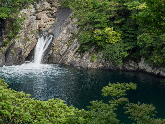 Jakušima, ekološki raj u Japanu