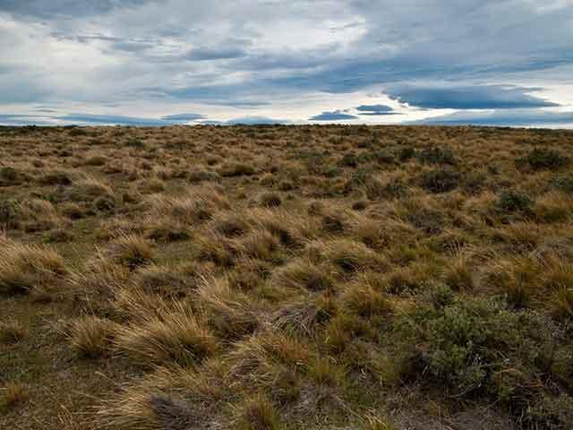 Ognjena zemlja, tragom Magelanovih pustolovina