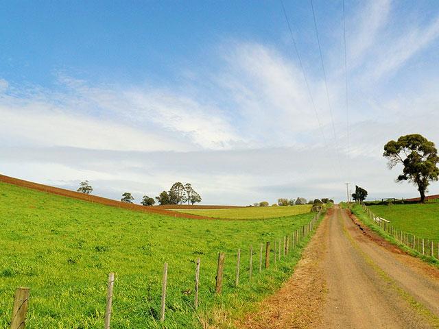 """Tasmanija, rajsko ostrvo na kome živi """"đavo"""""""